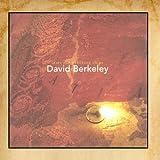 After the Wrecking Ships ~ David Berkeley