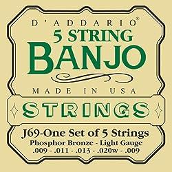 D'Addario J69 5-String Banjo Strings, Phosphor Bronze, Light, 9-20
