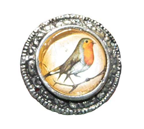 Glass & Rustic Antique Metal Dome Bird Knob Pull (Rustic Metal Knobs compare prices)