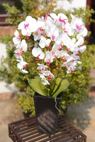 uk-gardens-orchidea-bianca-e-rosa-artificiale-pianta-in-un-vaso-alto-di-ceramica-bianco-casa-di-offi