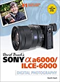 DAVID BUSCHS SONY ALPHA NEX-6 GDE TO PORTRAIT DIGITAL PHOTOGRAPHY, 1e