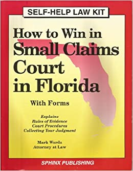 how to go to small claims court in florida