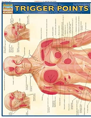 Trigger Points (Quick Study Academic) by QuickStudy