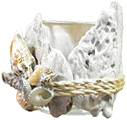 Seashell and Drift Wood Tea Light Candle Holder 3 h Nautical Tropical Home Decor