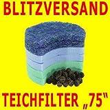 Pool Teichfiltereinsatz Sandfilteranlage Speedclean 75
