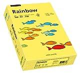 PAPYRUS Multifunktionspapier Rainbow, A4, 160 g/qm, gelb - 88042351
