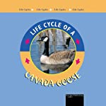 Life Cycles: Canada Goose | Jason Cooper