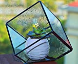 Modern Artistic Clear Glass Cube Box Glass Plant Terrarium / Decorative Votive Candle Tea Light Holder