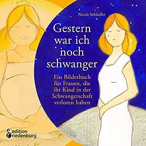 Gestern war ich noch schwanger - Ein Bilderbuch für Frauen, die ihr Kind in der Schwangerschaft ver