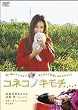コネコノキモチ [DVD]
