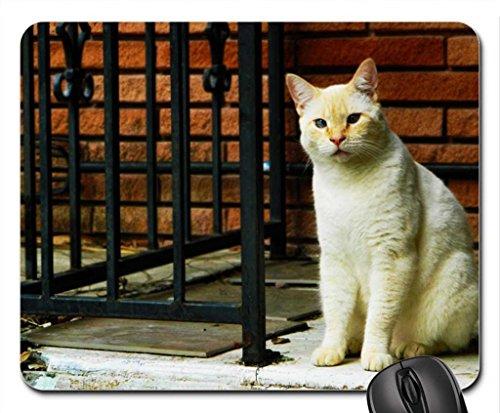 leonidas-my-cat-mouse-pad-mousepad-cats-mouse-pad