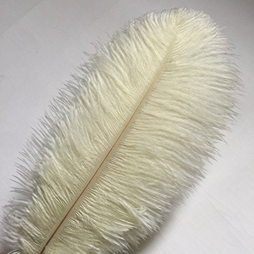 Sowder 10pcs Ostrich Feathers 12-14inch(30-35cm) for Home Wedding Decoration (ivory)