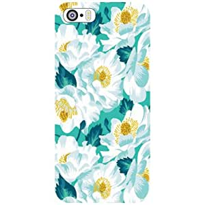 Apple iPhone 5S Back Cover - Colorful Designer Cases