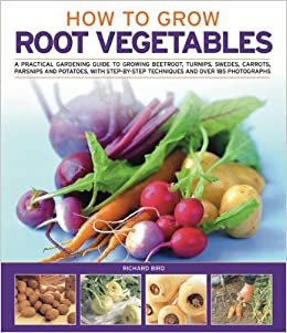 How to grow root vegetables a practical gardening guide to growing beets turnips rutabagas - Growing vegetables indoors practical tips ...