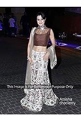 Designer WHITE NET Bollywood Replica Lehenga Choli.