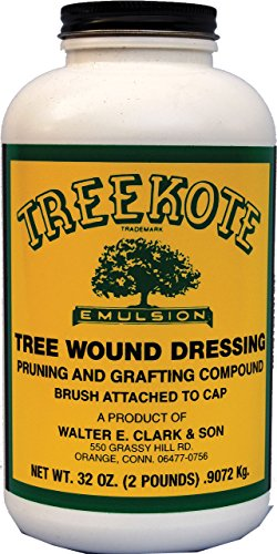 clarks-00032-treekote-brushtop-container-32-ounce