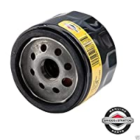 Genuine Oem Briggs & Stratton - Filt...