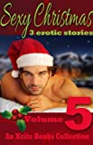 img - for Sexy Christmas Stories - Volume Five - an Xcite Books Collection book / textbook / text book