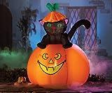 Casper Cat Halloween Lighted Outdoor Inflatable
