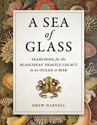 A Sea of Glass: Searching for the Blaschkas' Fragile Legacy in an Ocean at Risk (Organisms and Environments) by Drew Harvell (2016-05-17)