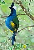 世界の美しい色の鳥