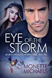 Eye of the Storm (Security Specialists International)