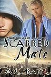 Scarred Mate (Werewolves of Manhattan Book 3)