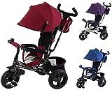 Clamaro 'Buttler GT' 4in1 Kinderwagen Dreirad ab 1 Jahr mit lenkbarer Schubstange, flüsterleise Gummireifen und Sonnendach, Kinderdreirad durch 4-fach Umbau für Kinder ab ca. 1 - 5 Jahre geeignet hergestellt von Clamaro