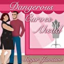 Dangerous Curves Ahead: Perfect Fit Series, Book 1 Audiobook by Sugar Jamison Narrated by Robin Eller