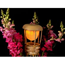 "Fortune TIKI-60 Bamboo Tiki LED Light, 60-1/2"" Height"