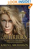 AFTERBURN (The American Geological Survey Book 1)