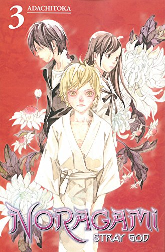 Noragami: Stray God, Vol. 3 (Noragami, #3)