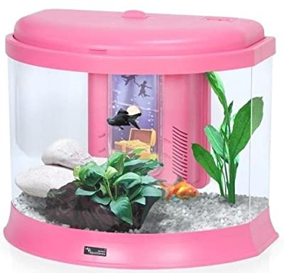 Kids / Childrens Small Aquarium Fish Tank with Money Box - 3 Colours / Nano Tanks Coldwater