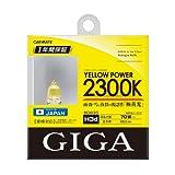 カーメイト 車用 ハロゲン GIGA イエローパワー H3D 2300K イエロー BD835