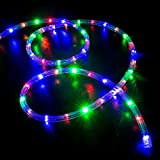 WYZworks 10', 25', 50', 100', 150', 300' ft (300' feet) Multi-RGB LED Rope Lights - Flexible 2 Wire Accent Holiday Christmas Party Decoration Lighting