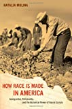 How Race Is Made in America: Immigration, Citizenship, and the Historical Power of Racial Scripts (American Crossroads)
