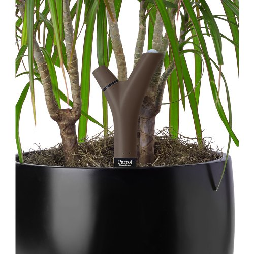 Parrot Flower Power Bluetooth-Enabled Smart Plant Sensor With Free Parrot Flower Power App (Brown)