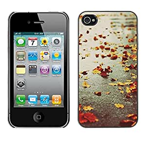 Omega Covers - Snap on Hard Back Case Cover Shell FOR Apple iPhone 4 / 4S - Autumn Seasons Rain Road Street Leafs