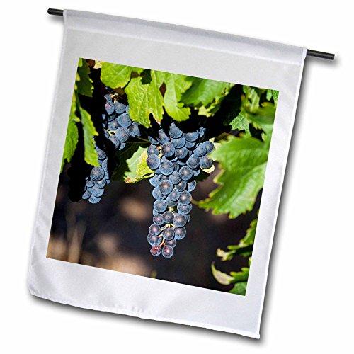 danita-delimont-australia-margaret-river-wine-region-18-x-27-inch-garden-flag-fl-226426-2