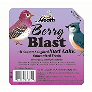 Heath Berry Blast Suet Cake 11.25 Oz