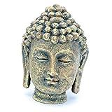 Penn Plax Mini Buddha Head Aquarium Ornament