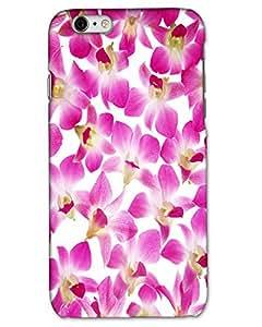 Hugo I Phone 5 / I Phone 5s Back Cover Hard Case Printed Designer Multicolour