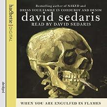 When You Are Engulfed in Flames | Livre audio Auteur(s) : David Sedaris Narrateur(s) : David Sedaris