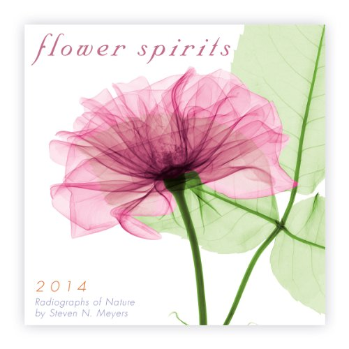 Flower Spirits 2014 Mini (calendar)