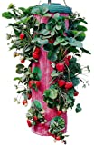 Felknor Ventures TT091112 Topsy Turvy Strawberry Planter (Discontinued by Manufacturer)