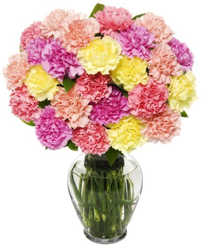 25 Stem Pastel Carnation Bunch – With Vase – Same Day Flower Delivery, Next Day Flower Delivery, Send Flowers Online, International Flower Delivery, Online Flowers, Flowers Online Delivery, Birthday Flowers Delivery