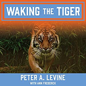 Waking the Tiger Audiobook