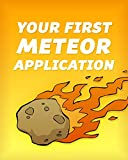 Your First Meteor Application: A Complete Beginner's Guide to the Meteor JavaScript Framework (English Edition)