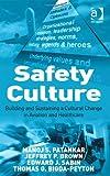 Safety Culture (0754672379) by Manoj S. Patankar