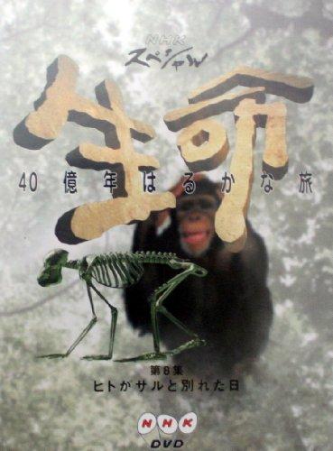 NHKスペシャル 生命40億年はるかな旅 第8集:ヒトがサルと別れた日 [DVD]